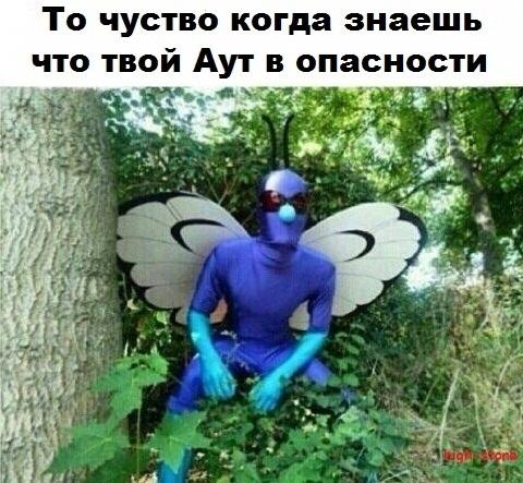 post-25888-0-63345000-1473677977_thumb.jpg