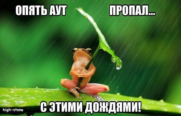 post-25888-0-94851500-1474453779_thumb.jpg