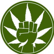 Общество Содействия Легализации Марихуаны им. Лестера Гринспуна