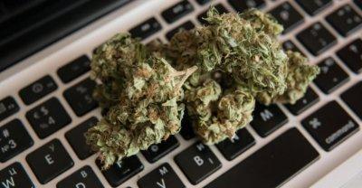 cannabis-online-order.jpg