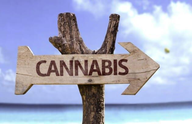 medical-cannabis-tourism.jpg