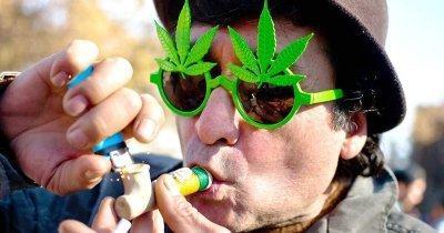 cannabis-addiction-holland(1).jpg