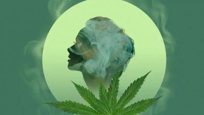 cannabis-brain-effect.jpg