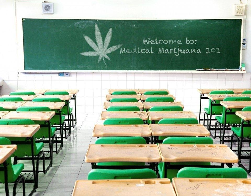cannabis-education-101.jpg