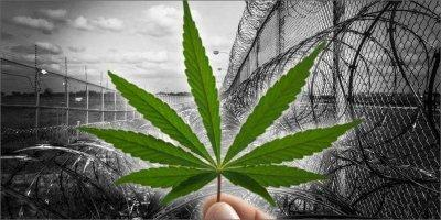 cannabis-prison-moms.jpg