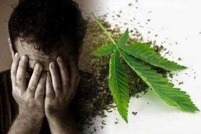 cannabis-use-disorder.jpg