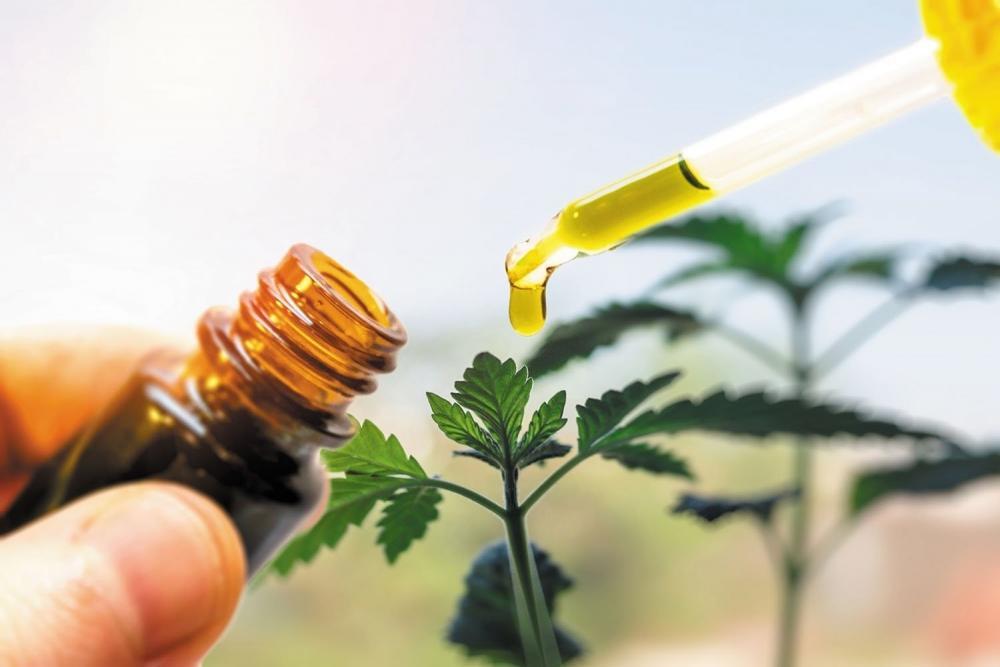 cannabis-lungs-protect.jpg