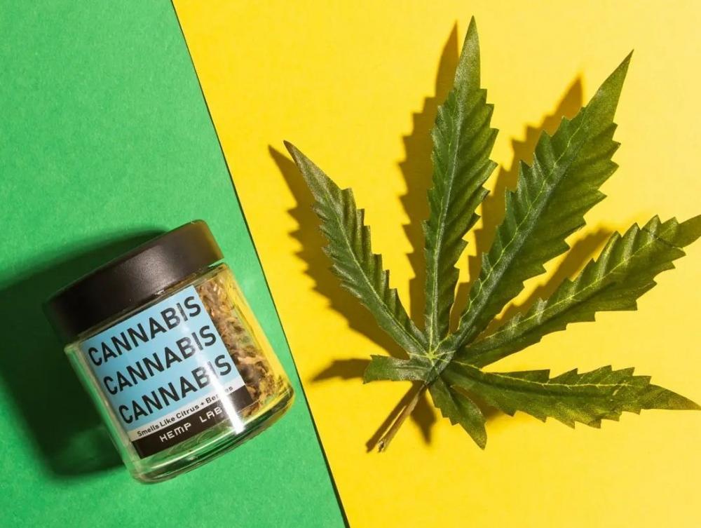 cannabis-microbusiness.jpg