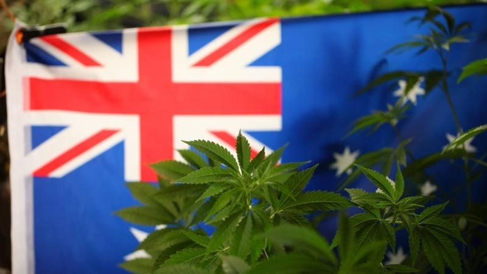 cannabis-australia-reimburse(1).jpg