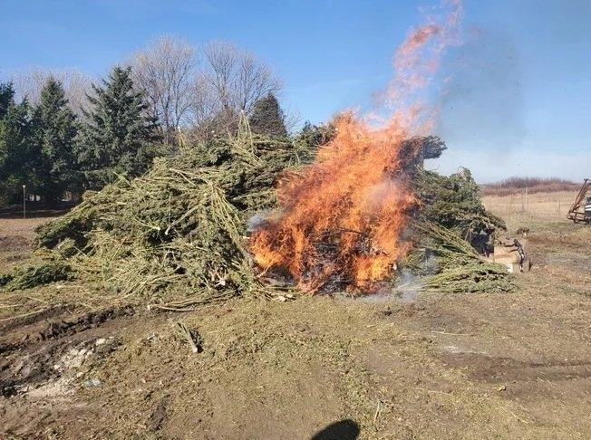 hemp-burn-iowa.jpg