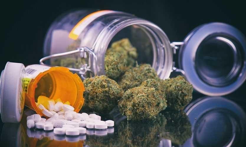 cannabis-vs-opioids.jpg