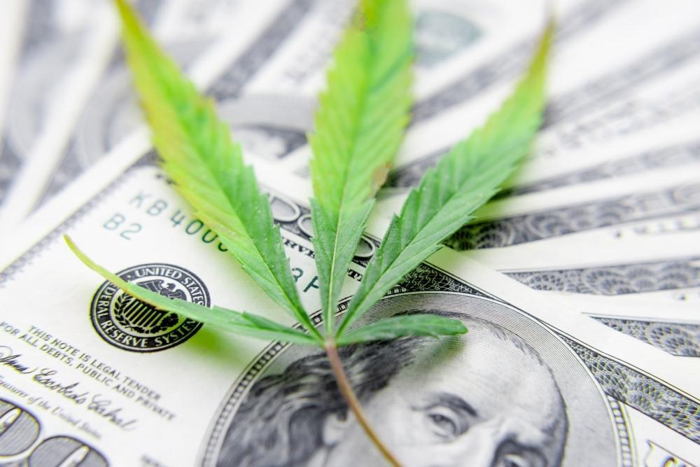 cannabis-taxes-us.jpeg