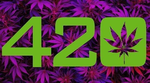 420-adidas.jpg