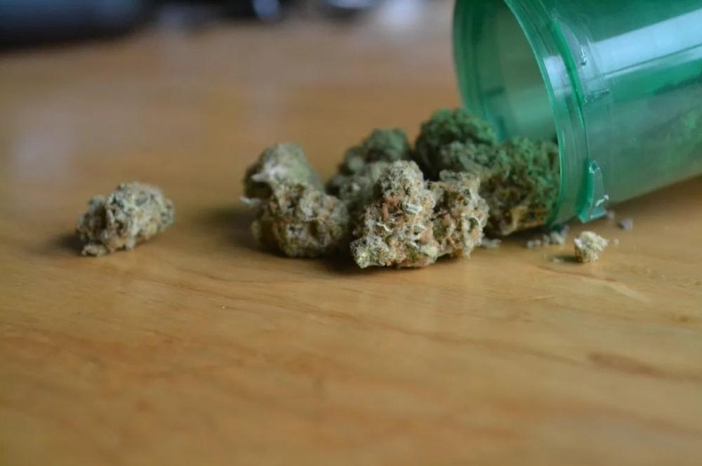 cannabis-debate-new-mexico.jpg