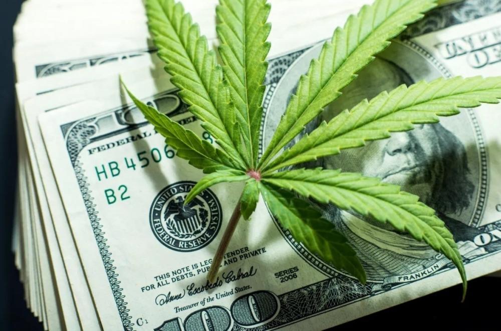 cannabis-shop-price-us.jpg