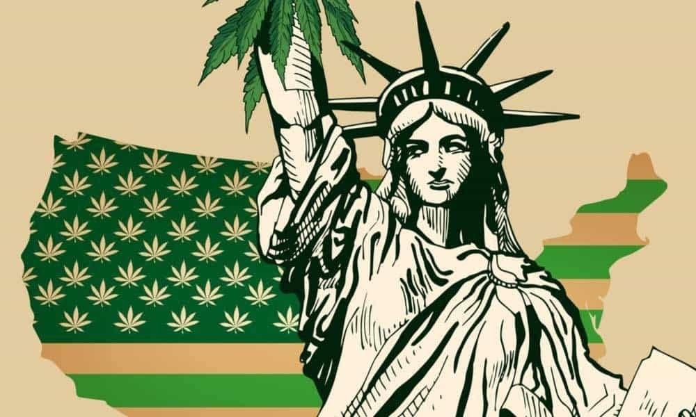 new-york-cannabis-legal-settled.jpg