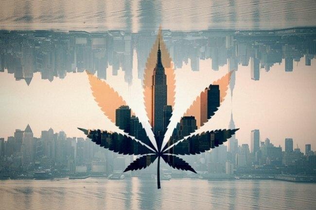 new-york-cannabis-plan.jpg