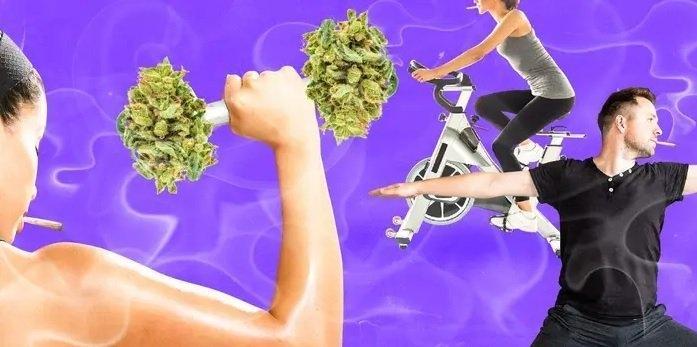 cannabis-active-lifestyle.jpg