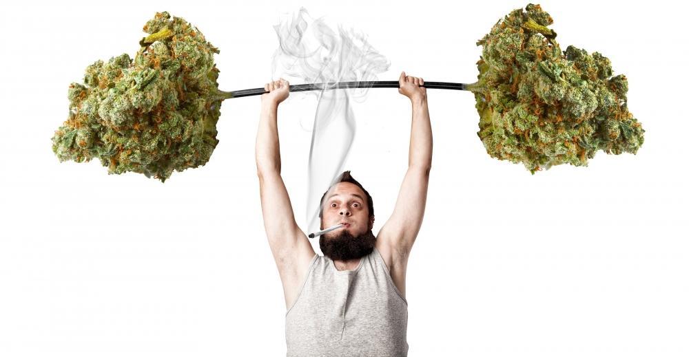 cannabis-physical-activity(1).jpg