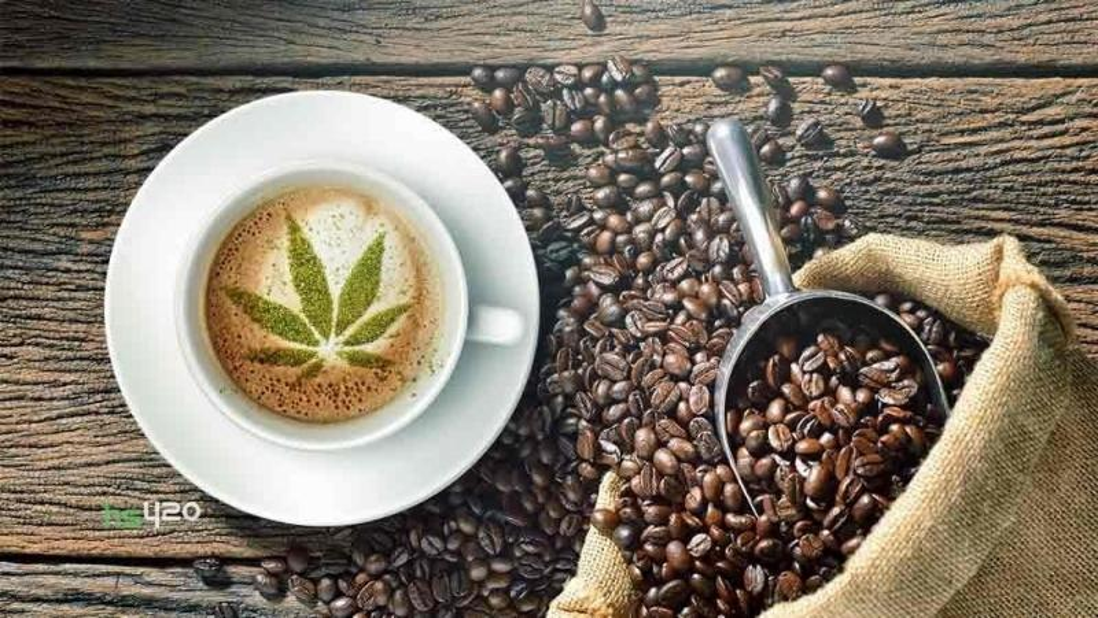 coffee-cannabis-effect(1).jpg