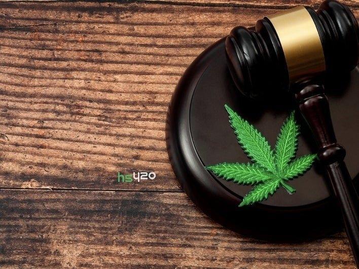 legalization-effect-drug-market(2).jpg