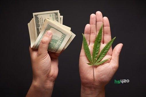 cannabis-payment-co2 (1).jpg