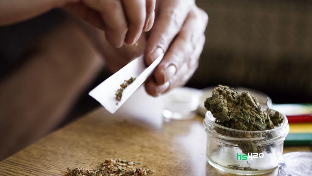 cannabis-use-rise-un-2019 (1).jpg