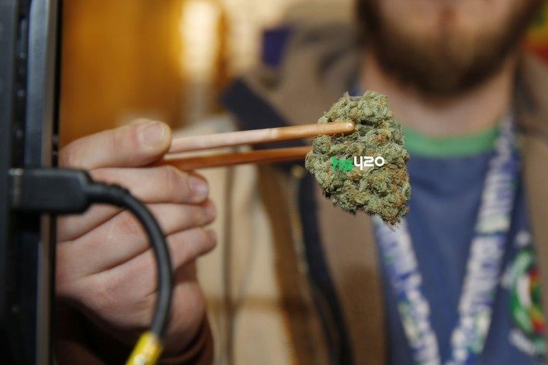 marijuana-potency-increase (1).jpeg