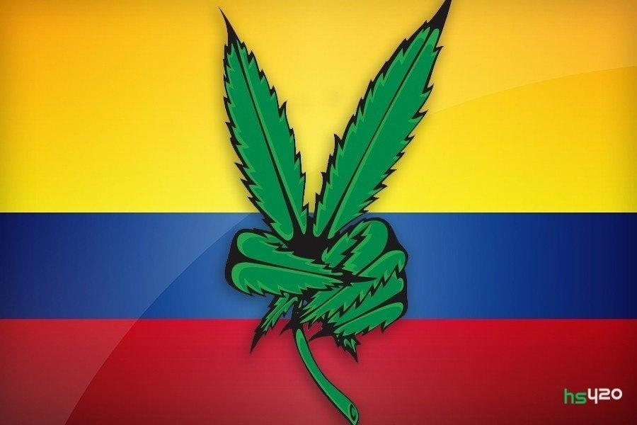 cannabis-colombia-export (1).jpg