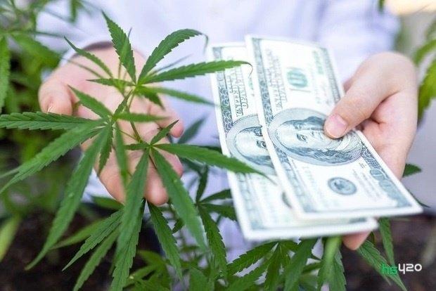 cannabis-prices (1).jpg
