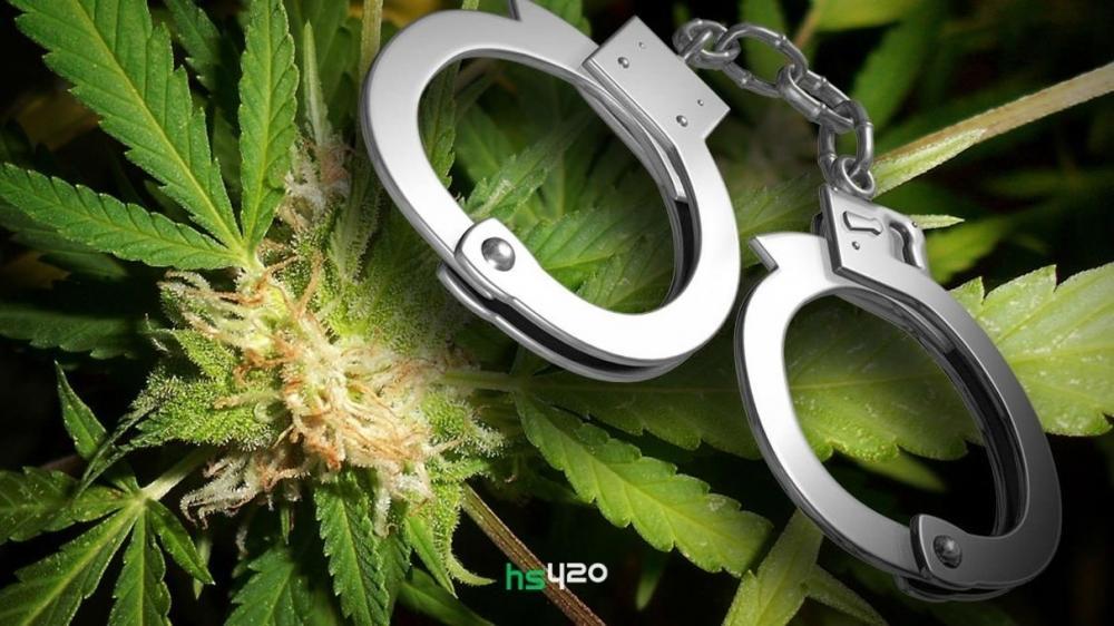 cannabis-vs-crimes-2.jpg