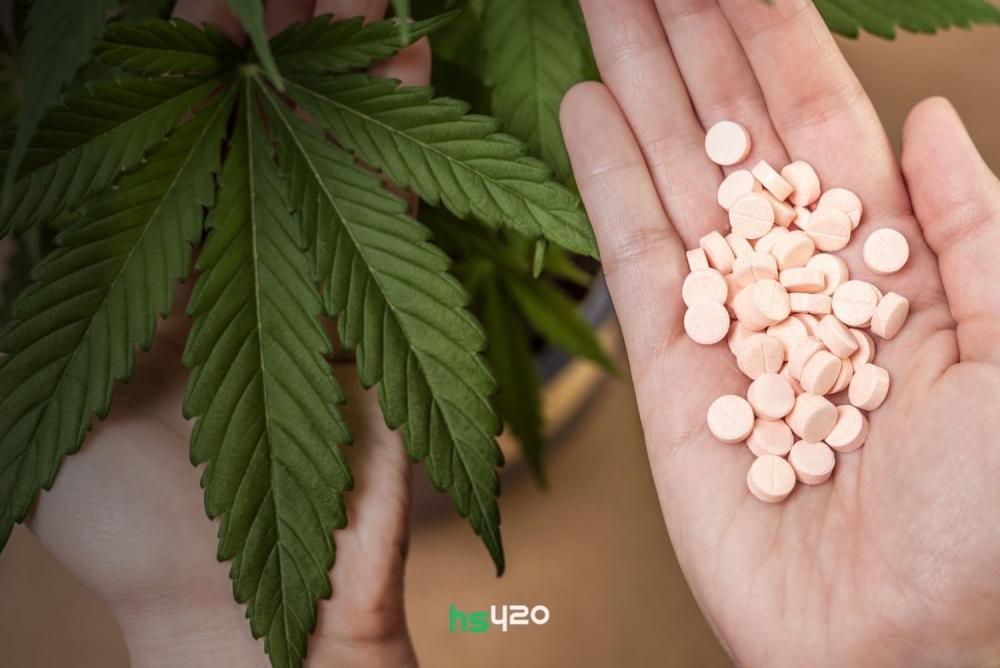 cannabis-vs-opioids-2.jpg