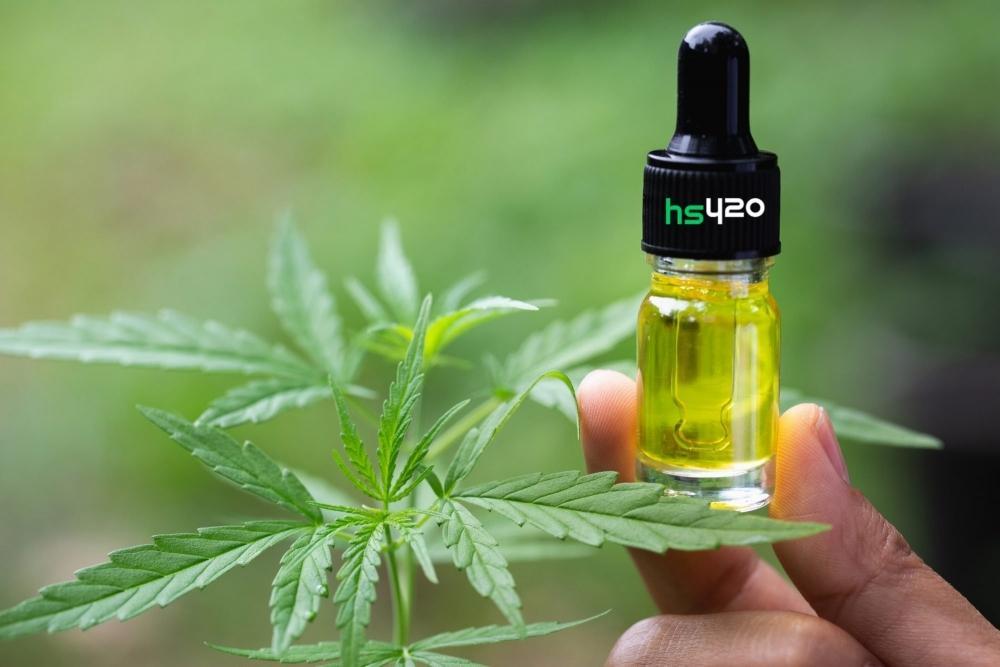 cannabis-oil (2).jpg