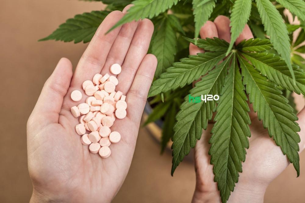 cannabis-vs-drugs (1).jpeg