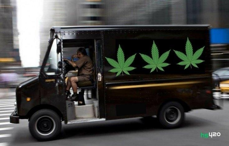cannabis-transport (1).jpg