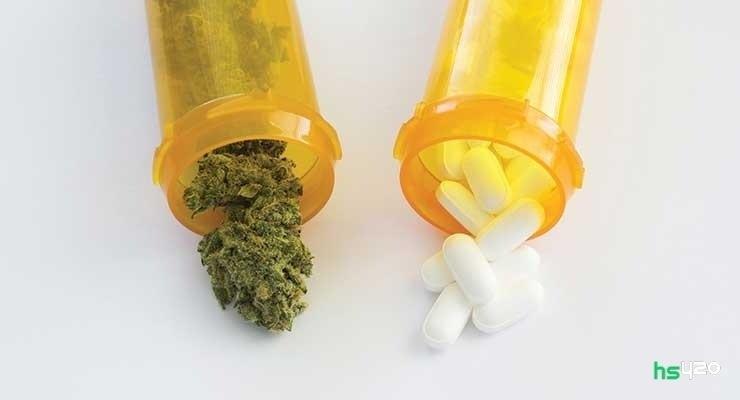 cannabis-drugs (1).jpg