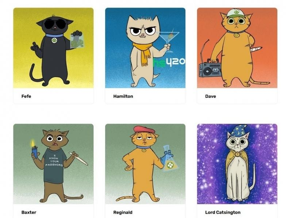 stoner-cats-nft-2.jpg
