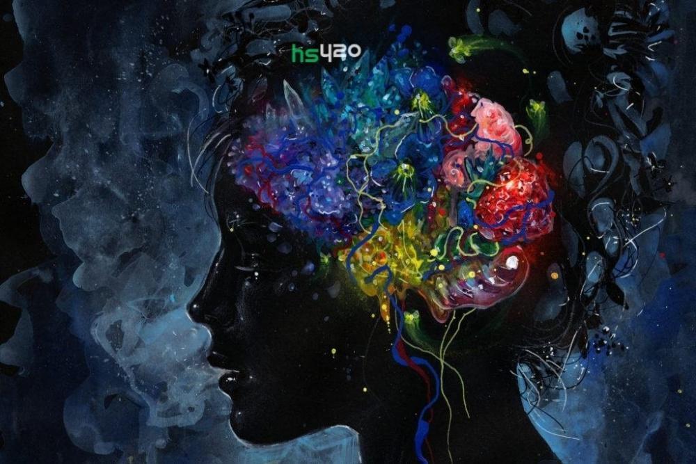 psilocybin-mushrooms-brain (1).jpg