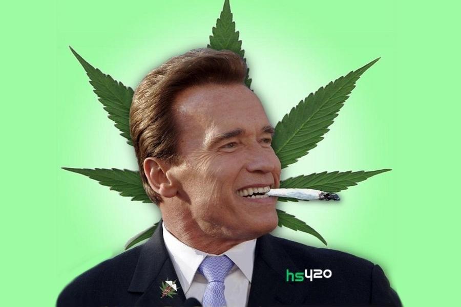 schwarzenegger-cannabis-prank(1).jpg